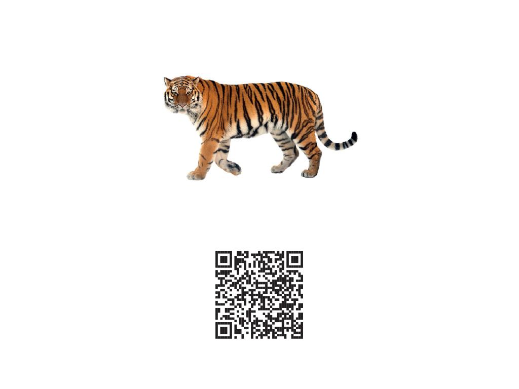 Carte augmentée animaux - QR code