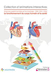 Animations interactives : Le fonctionnement du corps humain et la santé (CE2-CM1-CM2)