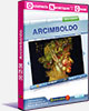 Collection DNC - ARCIMBOLDO