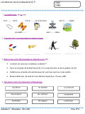 Exemplo curriculum vitae europeu